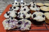blueberry oatmeal closeup